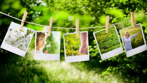 Photos on a clothesline