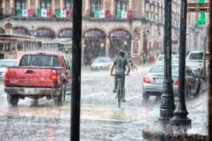IMG 0997 300x200 - Massive NYC Flooding Led to Millions of Damaged Photographs. DON'T PANIC!
